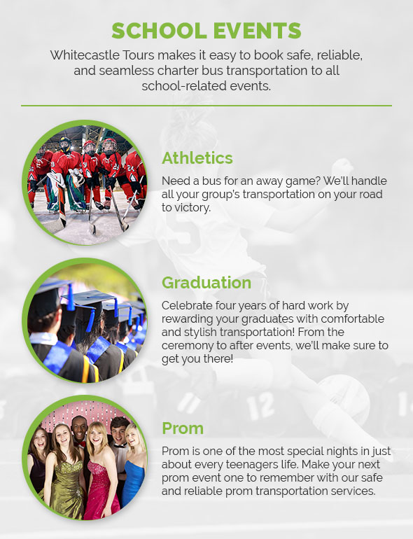ynseinfographic3