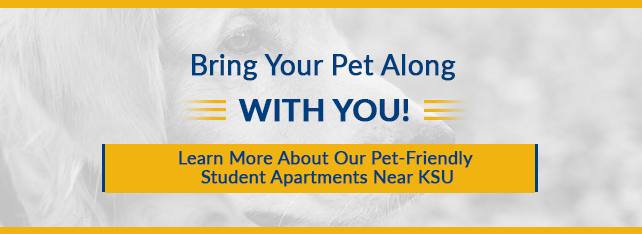 Image of dog advertising pet-friendly apartments