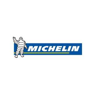 michelein131