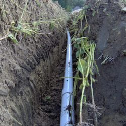 Image of PVC piping through trench with wildlife