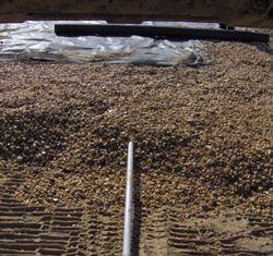 Image of a sand mound pipe installation