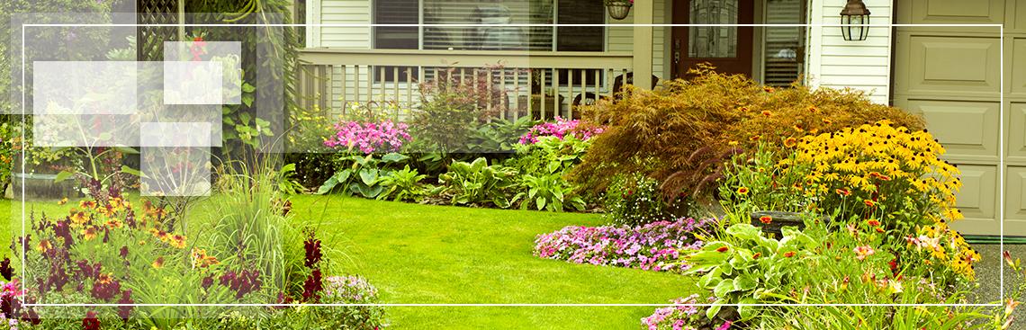 jcgardendesign: Xtreme Garden Design