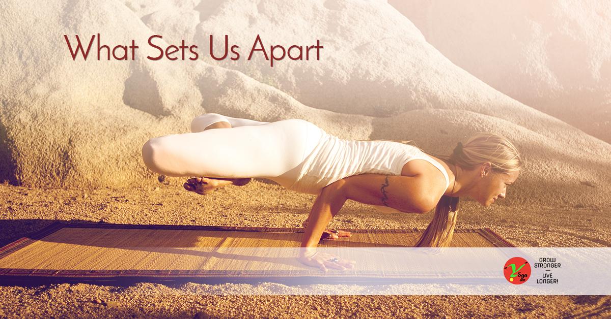 Jacksonville Yoga Studio: What Sets Us Apart   Yoga Den