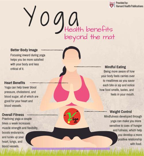 Yoga Classes Jacksonville Yoga Studio Florida Yoga Fitness 32257 Yoga Den