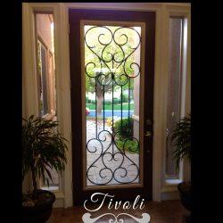 Professional shot of Tivoli glass door