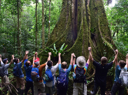 Students surround an ancient tree in the rainforest